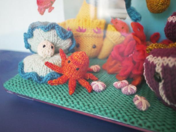 sandpennies_aquarium